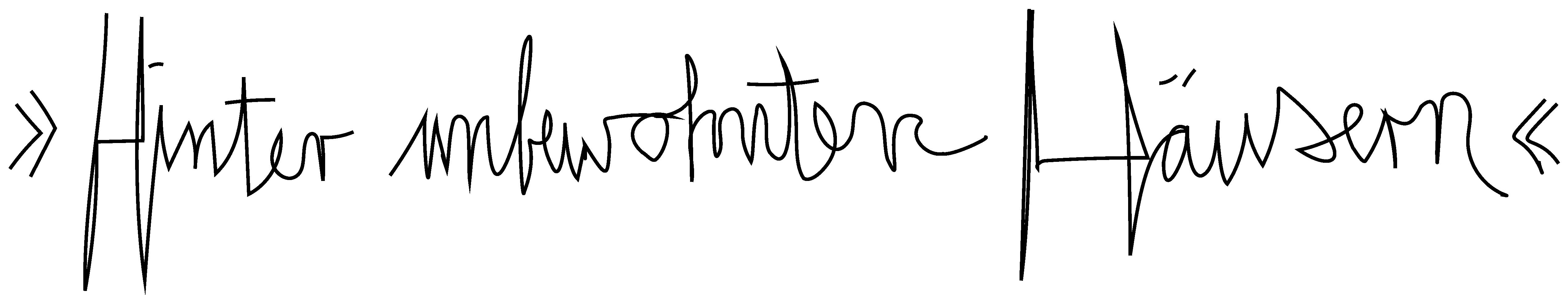 Kaufmann-Frust_Hinter_unbewohnten_Haeusern_Schriftzug_Zeichenflaeche-1-Kopie-3